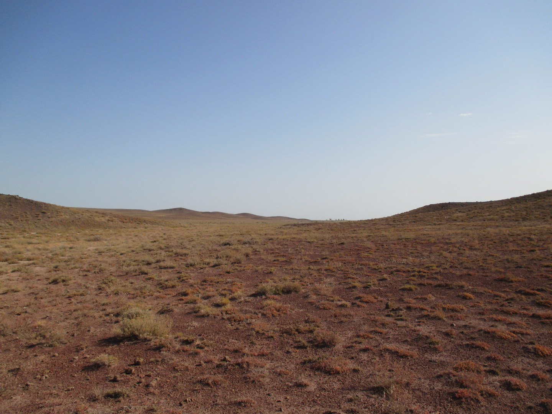 казахские степи будто природа другой планеты. балхаш. казахстан
