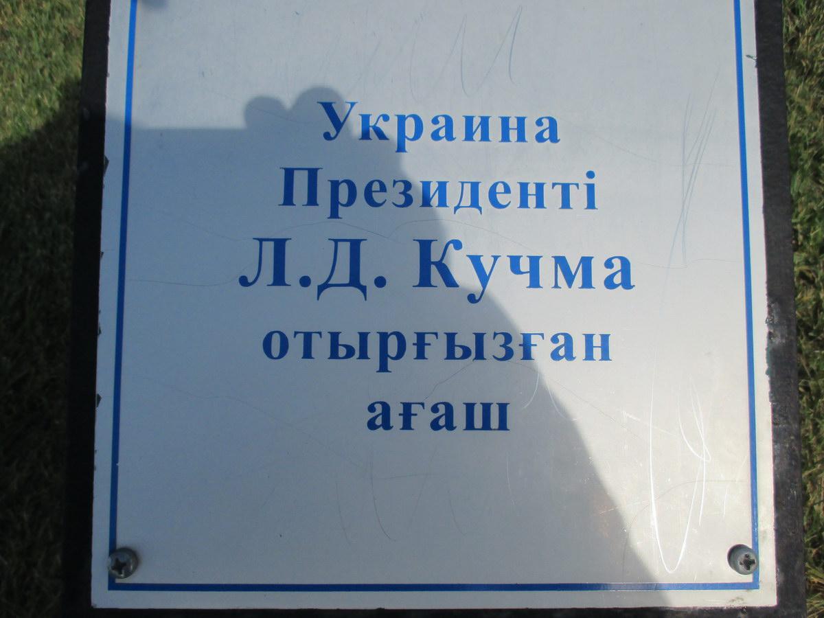 президентская аллея, астана. ёлки, кучма украина