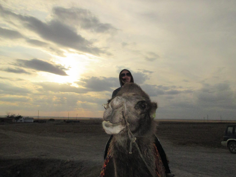 верблюд. путешествие автостопом в казахстан