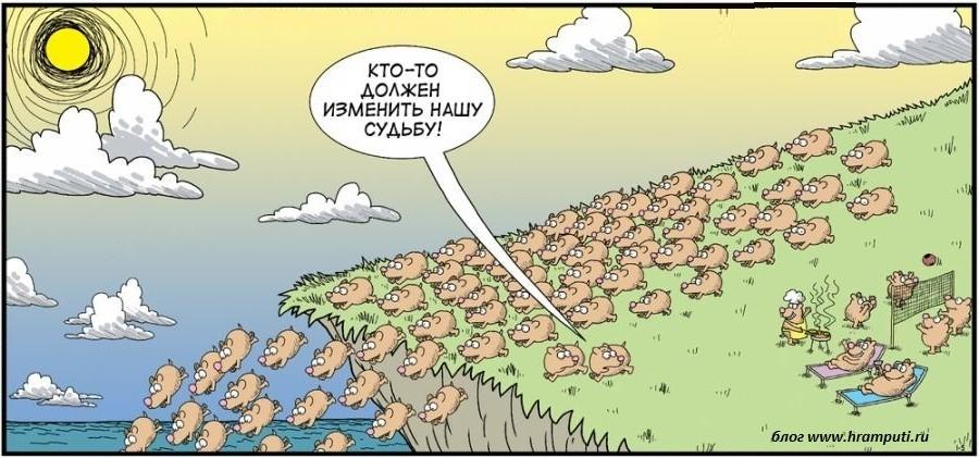 Свиньи бегут в пропасть карикатура. тема: Истинная религия и вера. Осознанное вегетарианство. Что есть Бог