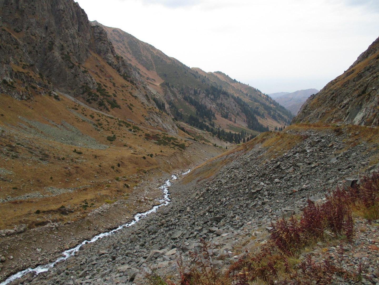 река. горы алатау. казахстан