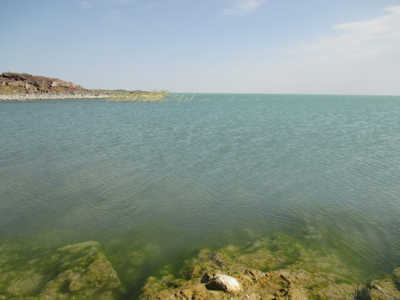 озеро балхаш. казахстан
