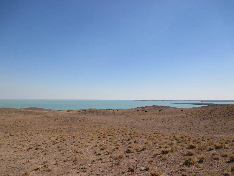 озеро балхаш. красивая природа. казахстан