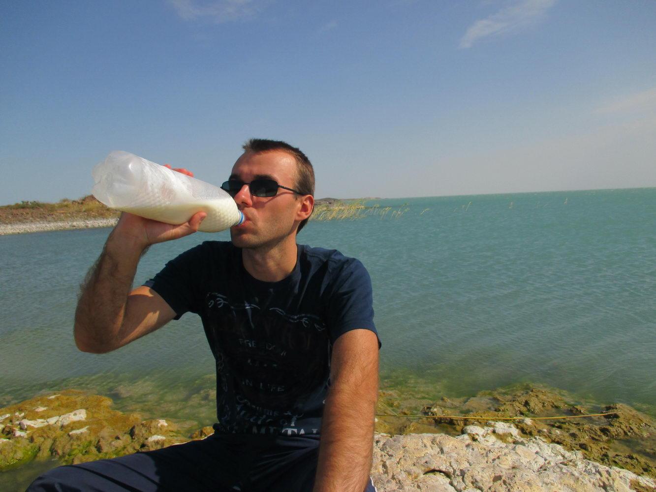 шубат - верблюжье молоко. балхаш. казахстан