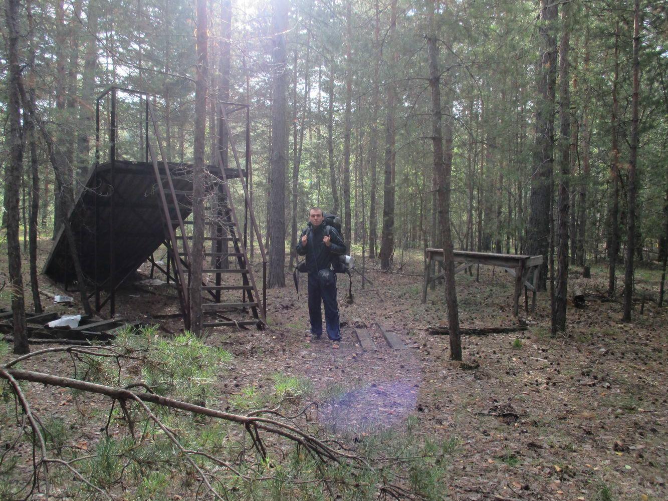 таинственный лес и старинные постройки. путешествие автостопом через урал и сибирь, природа