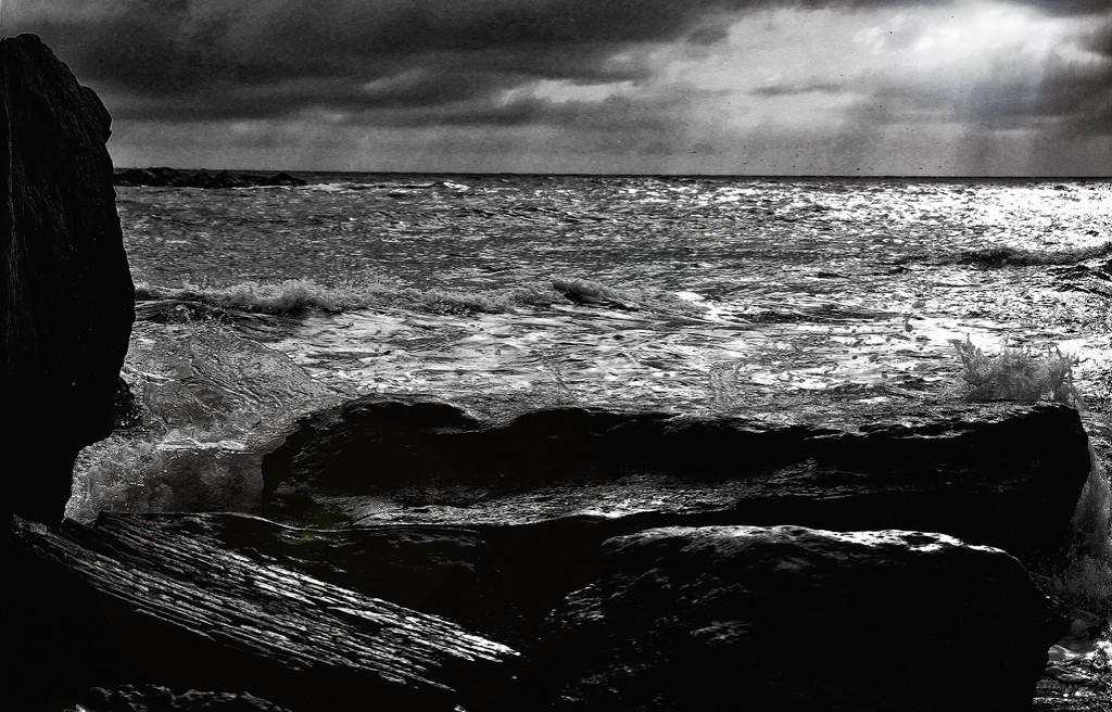 Отравленный людьми мир и ядовитое море
