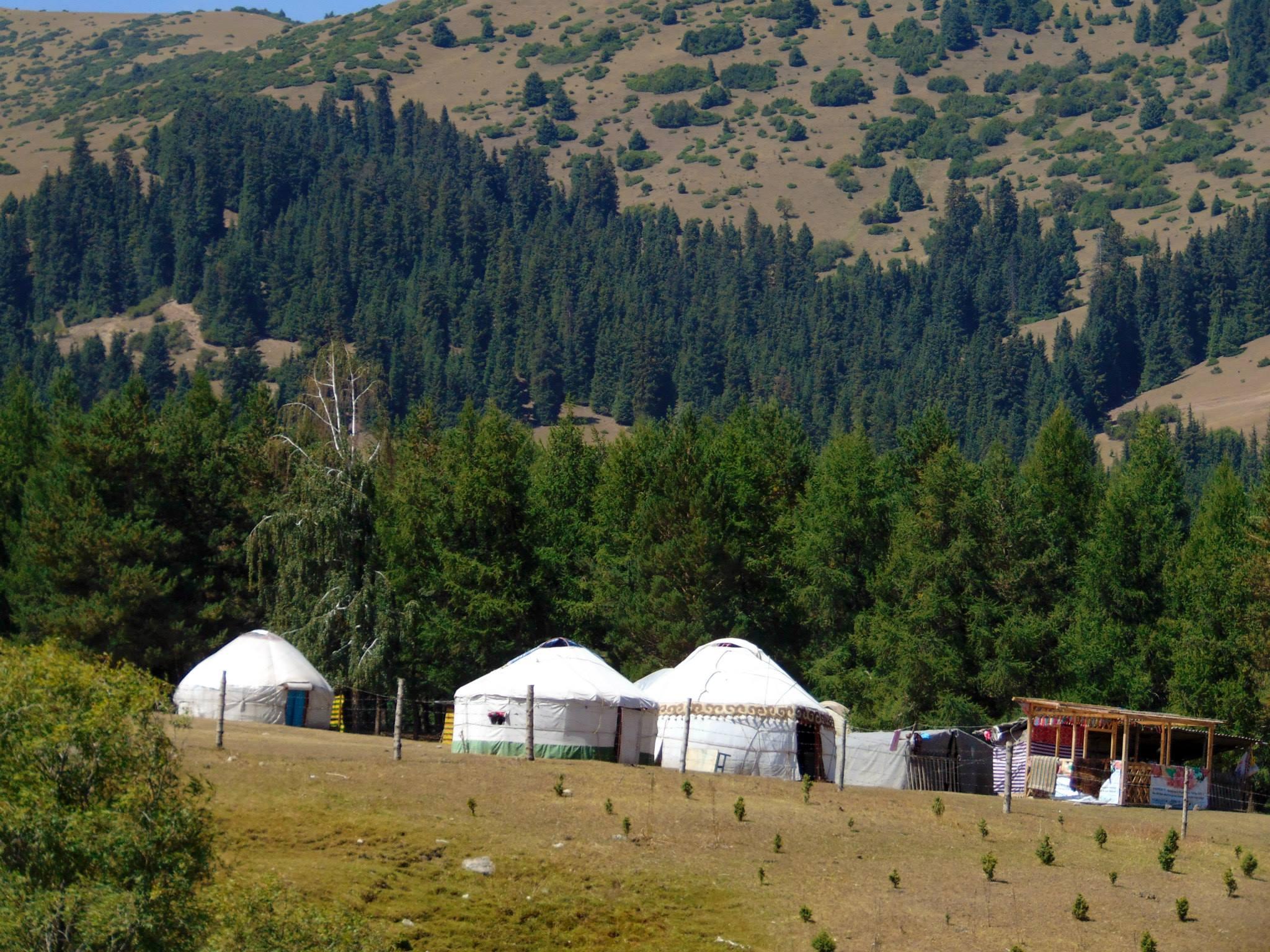 юрты. джалал-абад. ферганская долина. предгорье тянь-шаня. путешествия кати. киргизия
