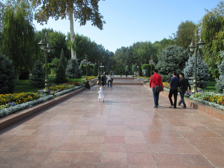 аллея в парке. узбекистан ташкент