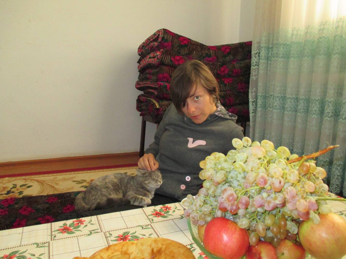 королевский стол и прикольный кот. в гостях. нукус узбекистан
