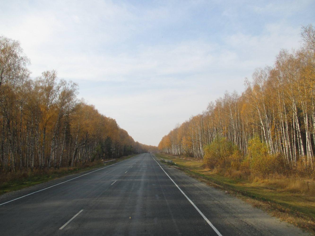леса под самарой. автостопом в украину