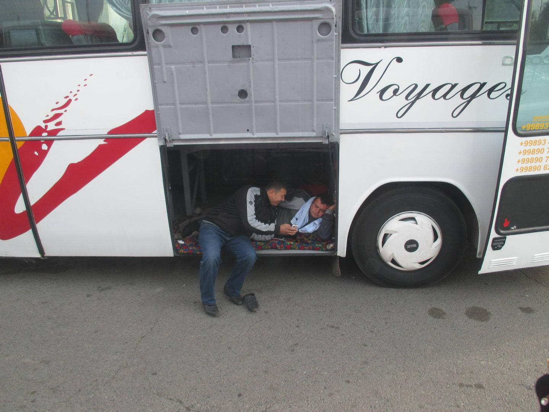 вип места в автобусе. узбекистан ташкент