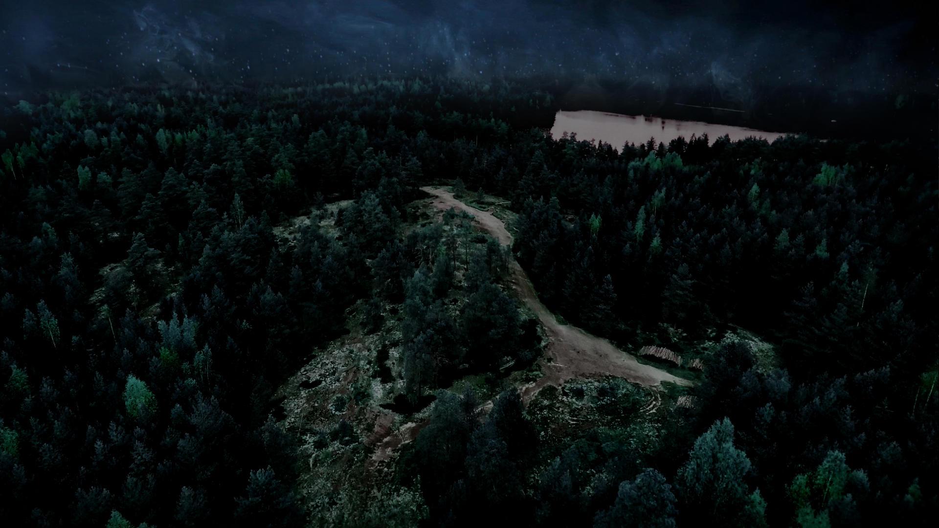 полёт над ночным лесом. путешествие в мир духов