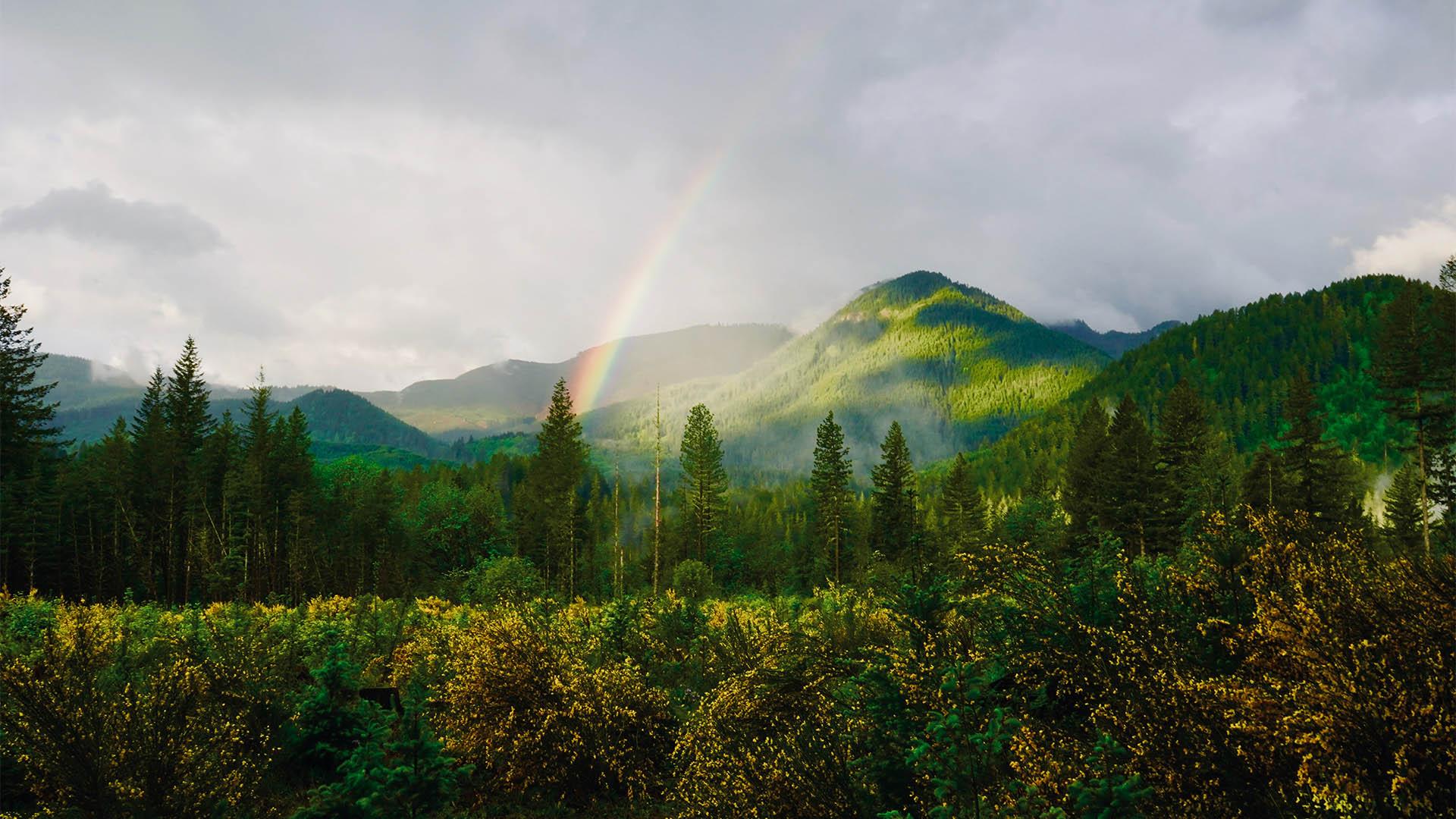 зелёные холмы. окна между мирами. призыв демона во сне